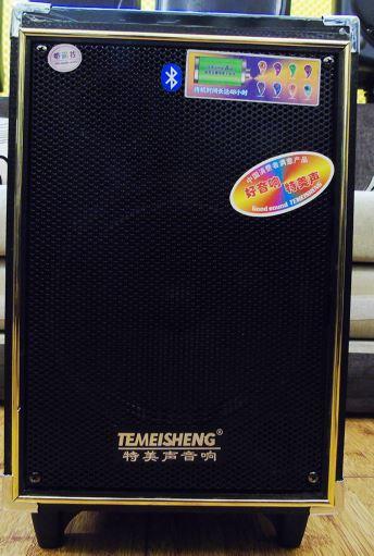 Loa Kéo Mini Temeisheng A8-5